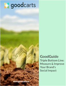 GoodGuides 03 Cover: The Triple Bottom Line