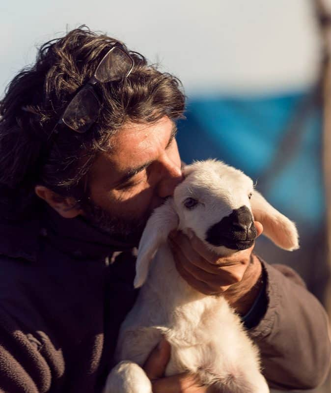 man caring for a lamb